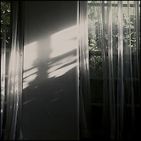 Sunlight streaming through net curtains