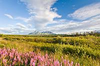 View of the Wrangell St. Elias mountains from the Yukon Territoy, Canada