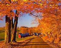Jenne Farm and road near South Woodstock Vermont