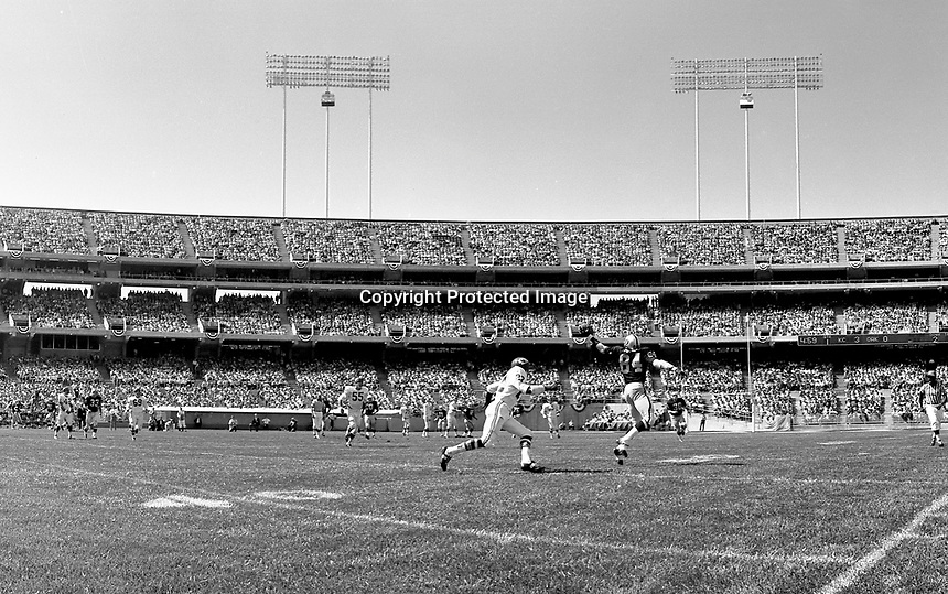 Oakland Raider's first game at the new Oakland-Alameda County Coliseum, Sept 18,1966..Raider reciever Art Powell grabs a one handed pass against the Kansas City Chiefs. .photo @ 1966 by Ron Riesterer/Oakland Tribune