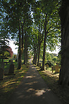 Tree lined path leading to St Andrew's parish church, Aysgarth, Yorkshire dales, North Yorkshire, England