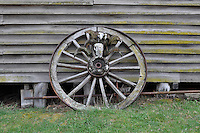 Cart Wheel