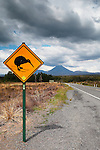 Kiwi Sign and Mt Ngauruhoe, New Zealand