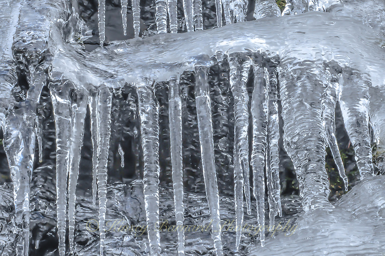 &quot;SERPENTINE&quot;<br /> <br /> Large icicles dropping from a serpentine arm of ice.