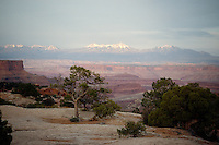 SOUTHWESTERN GEOLOGICAL FORMATIONS<br /> La Sal Mountains<br /> Viewed from Canyonlands National Park, Utah