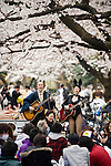 Entertainers sing for those partying under the cherry blossom at Ueno Park in Tokyo, Japan on 31 March, 2010.