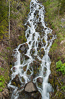 Cascade in a small stream in Yellowstone National Park