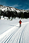 California: Kirkwood, Cross Country Ski, skier, model released, photo: skicrc104 .Photo copyright Lee Foster, www.fostertravel.com, 510/549-2202, lee@fostertravel.com