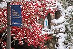 11.14.14 Snow Scenic 3.JPG by Matt Cashore/University of Notre Dame