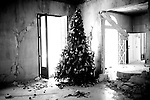 A Christmas tree stands in a house severely damaged by the earthquake in Port-au-Prince, Haiti.