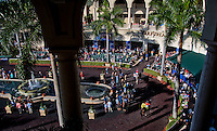 HALLANDALE BEACH, FL - JAN 28: The view of the paddock during the Pegasus World Cup Invitational Day at Gulfstream Park Race Course on January 28, 2017 in Hallandale Beach, Florida. (Photo by Scott Serio/Eclipse Sportswire/Getty Images)