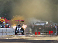 Aug 19, 2016; Brainerd, MN, USA; NHRA top fuel driver Steve Torrence during qualifying for the Lucas Oil Nationals at Brainerd International Raceway. Mandatory Credit: Mark J. Rebilas-USA TODAY Sports