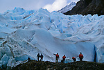 Hikers, Grey Glacier, Torres del Paine National Park, Chile