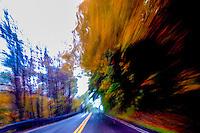 Dizzy Driving