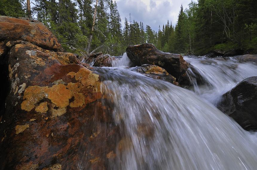 Waterfall Landscape, landskap,