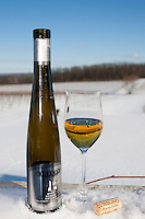 Vineland Winery 2008 Icewine Riesling.  January 15, 2012. © Allen McEachern.
