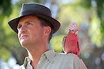 Stephen Curry playing Sam Pickles with galah in Cloud Street Scene 1/137 - Photograph by David Dare Parker