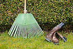 Green rake leaning against green hedge in backyard with muddy boots