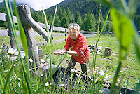 Tiroler Oberland, Tyrol, Austria, June 2009. Hiking in the Radurschltal valley takes you through a mystrious forest with green alpine pastures, cattle, wooden sculptures and rushing mountain creeks. The Region of the Tyrolian Highlands offer many different options for outdoor adventures, leisure and relaxing. Photo by Frits Meyst/Adventure4ever.com