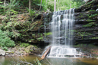 This waterfall is deep in the woods at Ricketts Glen state park in  northeastern Pennsylvania. It is forty five feet high and empties into a wide round pool that hikers often swim in. If you look carefully, the trail goes across the upper left of the frame on the way down to here.<br />