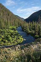 Wood River