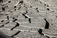 Dry Mud, Yellowstone National Park