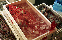 A large red snapper for sale amongst other crates of seafood at the Tsukiji Fish Markets, Tokyo, Japan