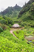 Limahuli Garden and Preserve on Kaua'i.
