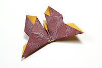 OrigamiUSA Butterfly design by Michael G. LaFosse 2015. Folded by Lilia Fung.