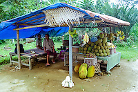 Bali, Tabanan, Bedugul. Selling fruit along the road south of Bedugul.