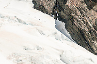 A party of climbers descending the Main Divide along Mt. Spencer on topr of Davis Snowfield of the Franz Josef Glacier - Westland National Park, West Coast, New Zealand
