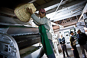 Factory worker, Inderey Sarki is seen throwing in the tea leaves into the drier during the process of tea drying at Makaibari Tea Estate factory, Kurseong in Darjeeling, India.