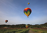 Hot air balloons pepper the sky over Napa Valley during the mustard Festival in March of 2010.