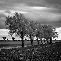 Walsham Le Willows, Suffolk | Black and White