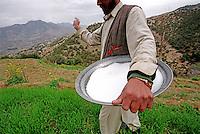 A Pashtu man tends to his fields in a village near Peshawar.