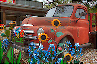 From Wimberley, Texas, in the heart of the Hill Country, the Cackleberry Mercantile often decorates its grounds with seasonal displays. Here, bluebonnets, sunflowers,a nd other wildflowers adorn the old Dodge Truck that sits in front of the store.