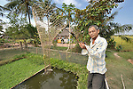 Men Sia harvests fish from an artificial pond in Soepreng, a village in the Kampot region of Cambodia.
