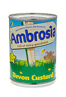 Tin of Ambrosia Devon Custard - March 2012