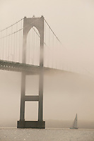 USA - Newport, RI - Twelve meter Courageous sails under the fog covered Newport bridge.