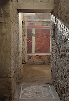 Entrance room to the Frigidarium or cold pool of the baths, with floral floor mosaic, and in the background the start of the Cryptoportico, the vaulted corridor used for wine storage, in the Casa del Criptoportico, or House of the Cryptoporticus, Pompeii, Italy. The house is one of the largest in Pompeii and was owned by the Valerii Rufi family and built in the 3rd century BC. It takes its name from the underground corridor or cryptoporticus used as a wine cellar and lit by small windows. Pompeii is a Roman town which was destroyed and buried under 4-6 m of volcanic ash in the eruption of Mount Vesuvius in 79 AD. Buildings and artefacts were preserved in the ash and have been excavated and restored. Pompeii is listed as a UNESCO World Heritage Site. Picture by Manuel Cohen