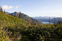 Scenic view of Halibut Cove Lagoon and the Kenai Mountains from the Alpine Ridge Trail in Kachemak Bay State Park.