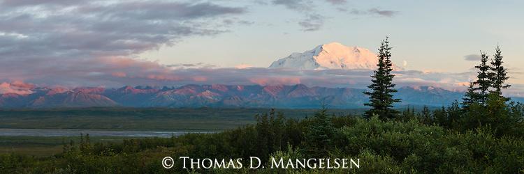The moon sets in Denali National Park, Alaska.