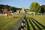 Old Bethpage, New York, USA. September 28, 2014. Palomino horses graze on grass inside a wood slat fence, with the large Exhibition Hall in the background, at the 172nd Long Island Fair, a six-day fall county fair held late September and early October. A yearly event since 1842, the old-time festival is now held at a reconstructed fairground at Old Bethpage Village Restoration. The Palomino has a gold coat and white mane and tail.
