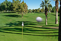Golf Course, Golf Ball landing on Green, Links, Fairways, Greens, Water Hazard, Sand Trap, Bunker, Palm Trees