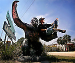 Dave Shealy unofficial mayor of Ochopee, Florida, with a population of 11, has devoted three decades to proving the existence of the Florida skunk ape.  Here, Shealy spends many evenings perched on the shoulders of this concrete skunk ape replica, hoping that someone will pullover off US41 to ask him about his skunk ape sightings.
