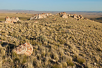 Lichen covered rocks and badlands in the Bighorn Basin