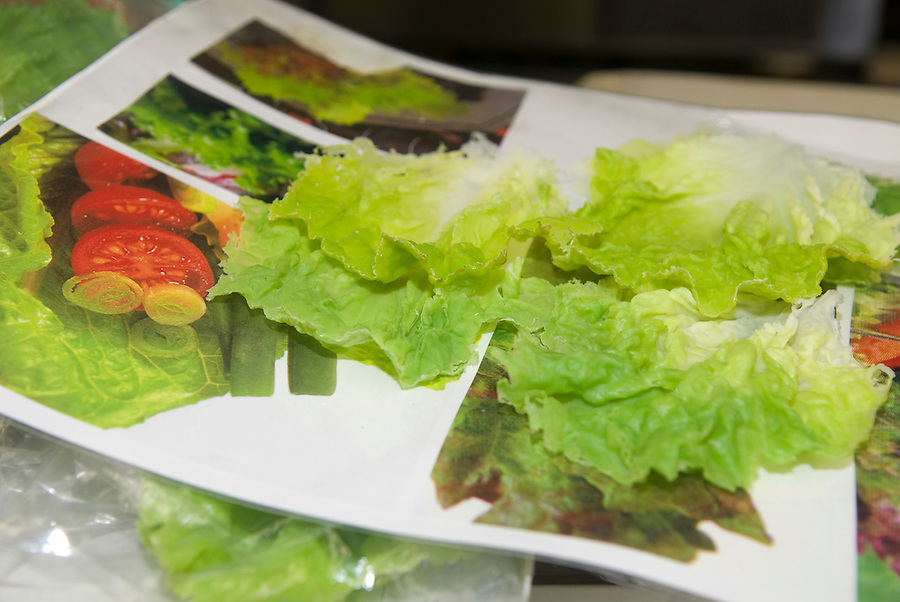 Plastic lettuce leaves on top of real lettuce photos at Maiduru Corporation, Tokyo, Japan, 22nd December 2008. Maiduru corporation makes highly realistic plastic food for display in restaurant and cafe windows. .
