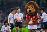 HSBC Asian 5 Nations 2013 - British & Irish Lions activation for HSBC