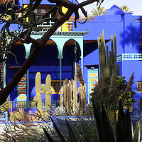 Villa and cacti, Majorelle Garden, Marrakech, Morocco. These botanical gardens were designed by French painter Jacques Majorelle, 1886-1962, in the 1920s and 1930s. He invented the shade of cobalt blue, known as Majorelle blue, which is used on the buildings and walls. Picture by Manuel Cohen