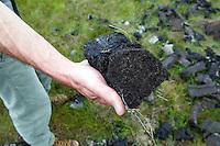 Man holding peat, Inverasdale, Scotland, UK